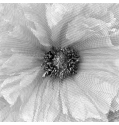 Distressed flower texture vector