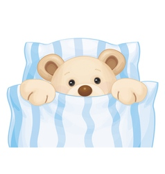 bear bed boy vector image vector image