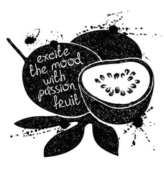 Black and white passion fruit silhouette vector