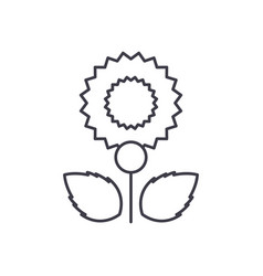 carnation line icon concept carnation flat vector image