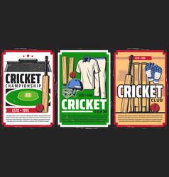 Cricket sport stadium and game equipment vector