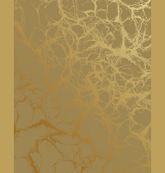 gold marble texture golden elements vector image