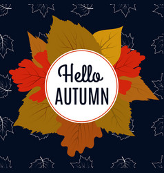 hello autumn banner with color leaves and maple vector image