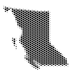 Hexagon halftone british columbia province map vector