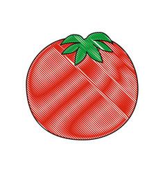 Isolated cute tomato vector