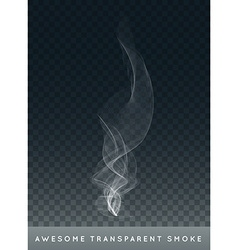 Realistic Cigarette Smoke or Fog or Haze with vector image