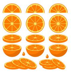 Set of fresh orange slices vector