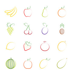 Set of outlines of fruit vector