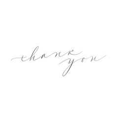 thank you calligraphy vector image