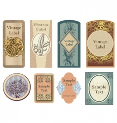 vintage vector labels vector image vector image