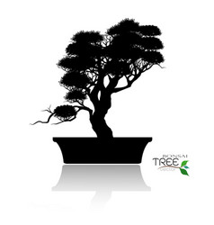 Bonsai treeplant silhouette icons on background vector
