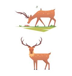 Christmas reindeer holiday mammal deer xmas vector