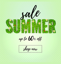 summer sale up to 60 percent discount vector image