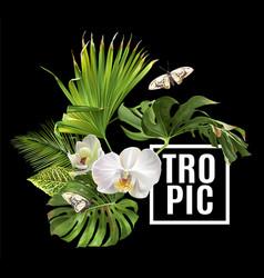 Tropic plants banner vector
