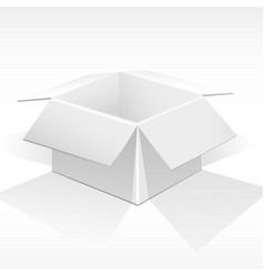 white packing box vector image