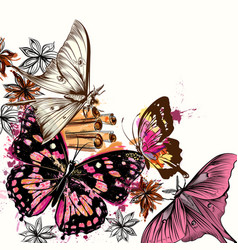 With butterflies and anis star vector