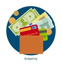 Wallet with money and credit cards vector image