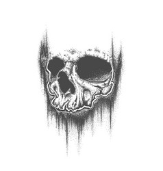 abstract dotwork grunge skull vector image