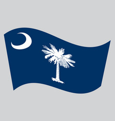 flag of south carolina waving on gray background vector image