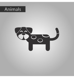 black and white style icon pet dog vector image