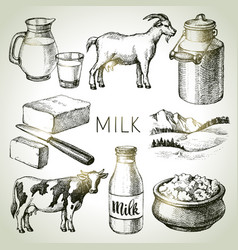 hand drawn sketch milk products set black and vector image