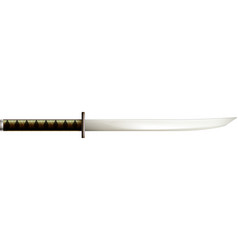 medieval dagger sword composition vector image