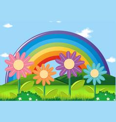 rainbow and flowers in garden vector image