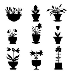silhouette flower icon set vector image
