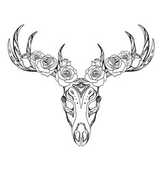 a deer skull with roses and boho pattern vector image
