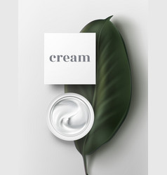 bowl of sour cream sauce mayonnaise ice cream vector image