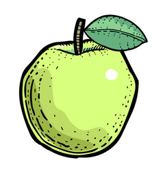 Cartoon image of apple vector