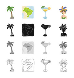palma the territory of brazil a drink a vector image