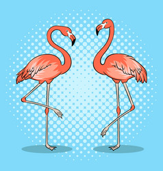 Pink flamingo bird pop art vector