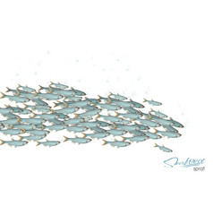 school of fish for header web vector image