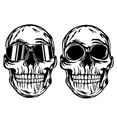 Skull and skull in sunglasses vector