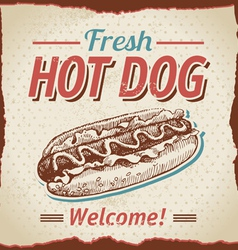 Vintage hot dogs background vector