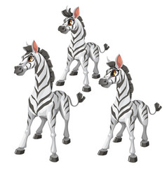 cartoon zebra on white background animal vector image vector image