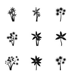 Tree palm icons set simple style vector
