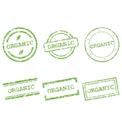 Organic stamp vector image vector image