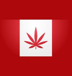 canada flag with marijuana leaf cannabis vector image