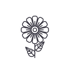 daisy line icon concept daisy flat sign vector image