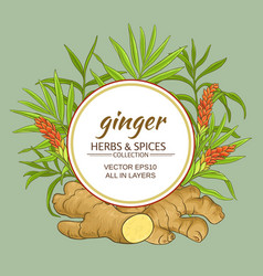 ginger frame vector image