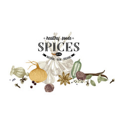 hand drawn border with spices vector image