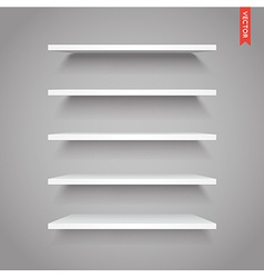 Set of Plastic Shelves Isolated on the Wall vector image
