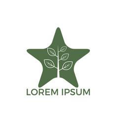 star tree logo design vector image