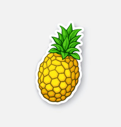 Sticker fresh pineapple vector