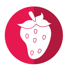 strawberry fruit nutrition shadow vector image