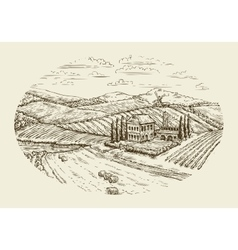 Vineyard landscape hand drawn vintage sketch vector