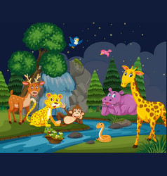Wild animals in woods at night vector