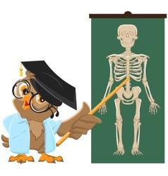 Owl teacher Anatomy Lesson the study of the human vector image